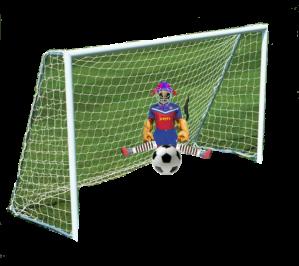 goal1a