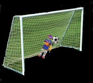 goal2a