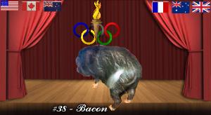 bacon#38