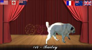 bailey#14
