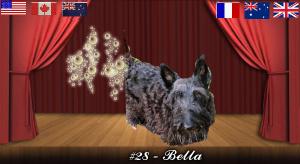 bella#28