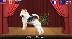 bertie#34