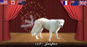 jasper#23