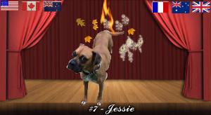 jessie#7