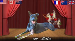 millie#29