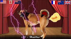 walter#30